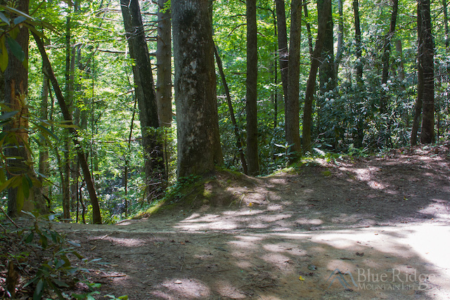 Cedar Rock Falls Spur Trail