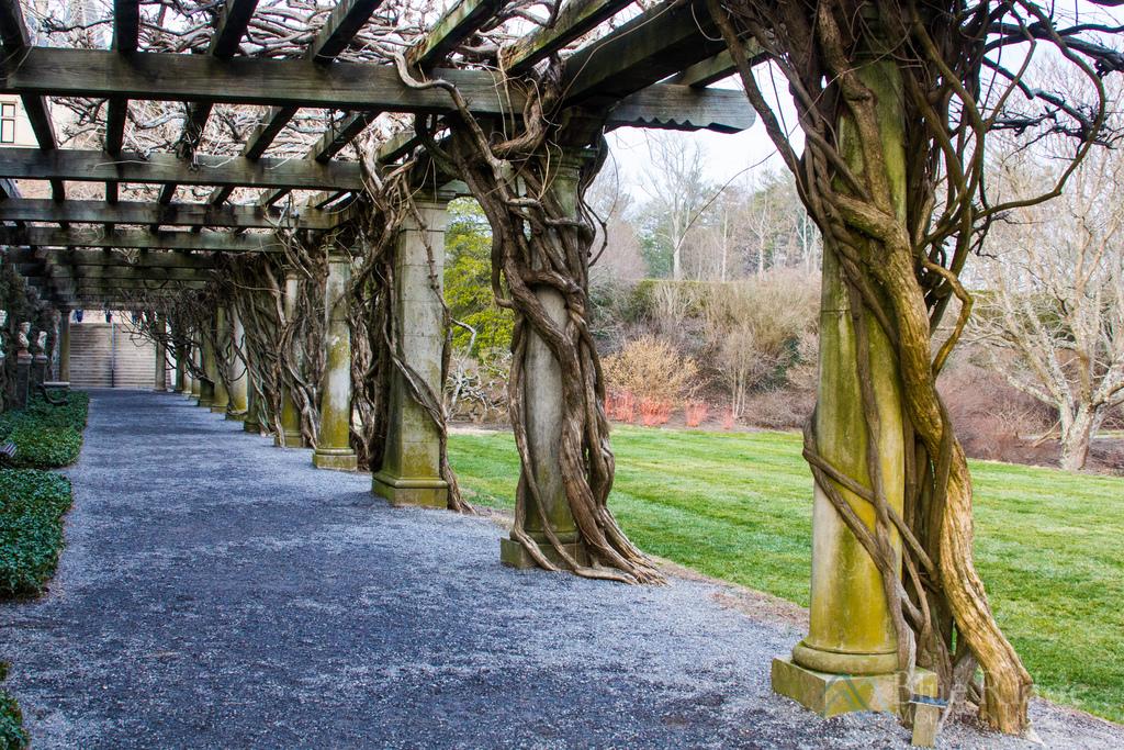 Biltmore Gardens Pergola
