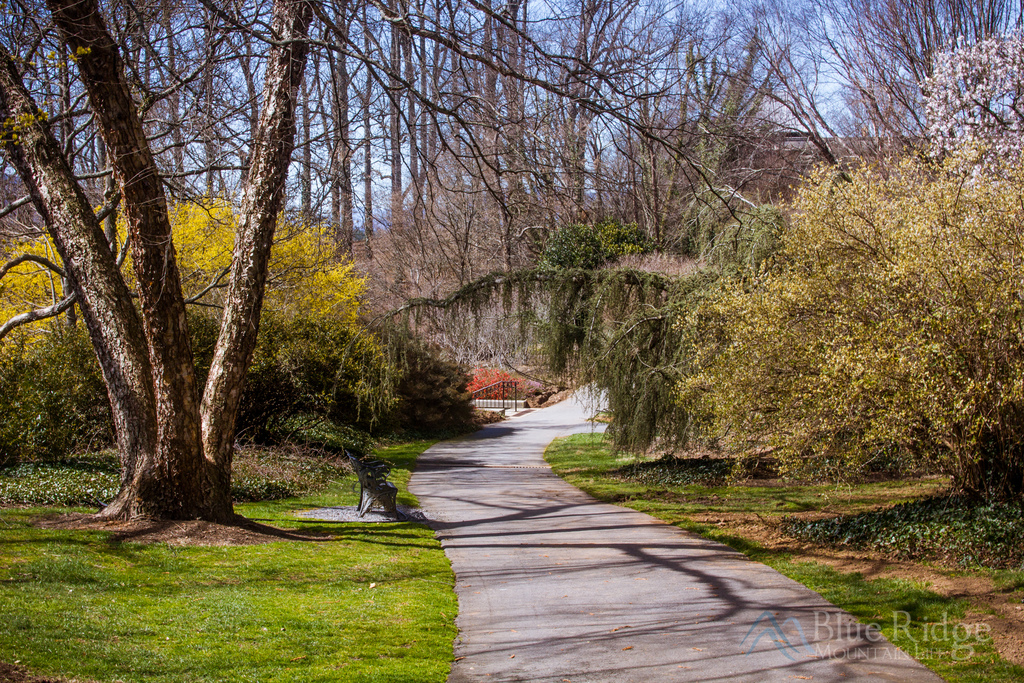 Biltmore Gardens Shrub Garden