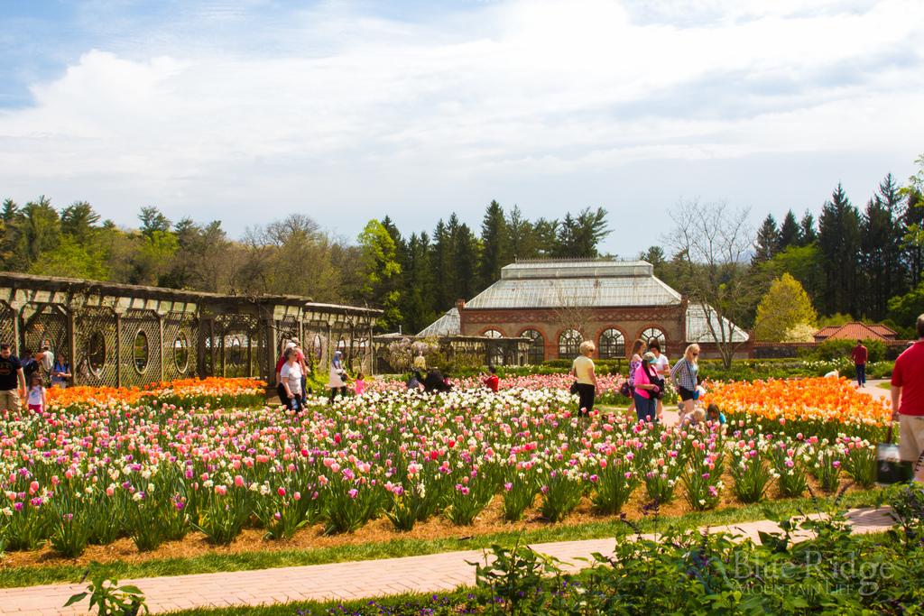 Biltmore Estate Gardens Spring