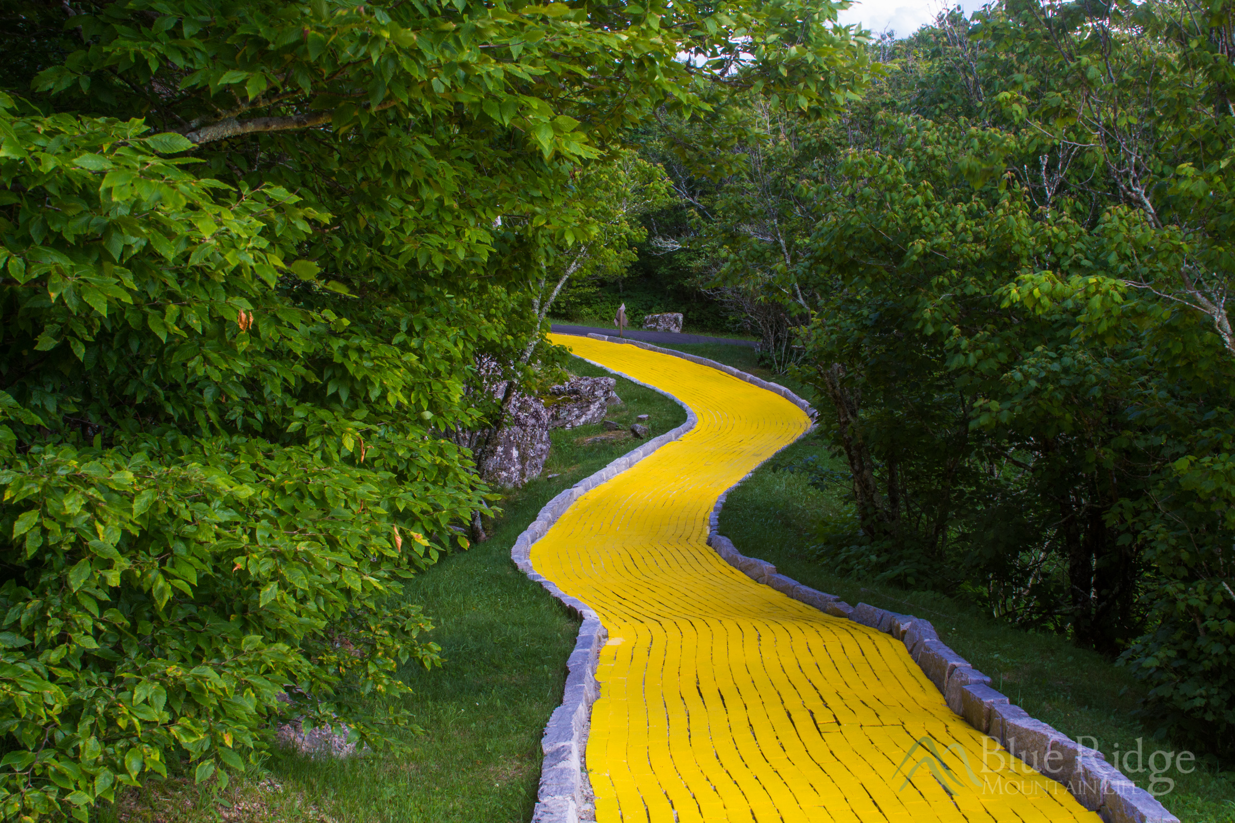 Land of Oz Yellow Brick Road