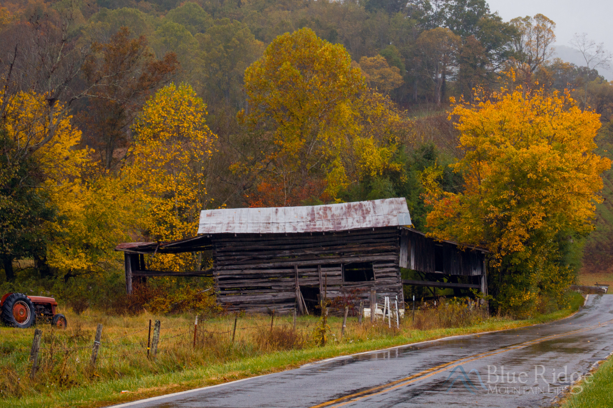Fall Foliage Blue Ridge Mountains