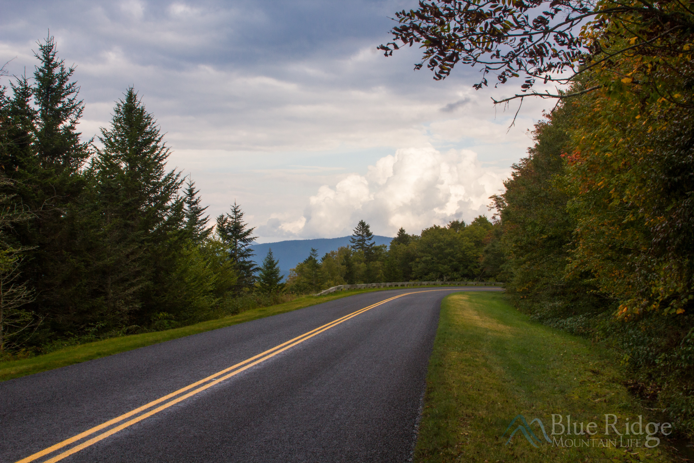 Fall Colors just beginning to show on the Blue Ridge Parkway