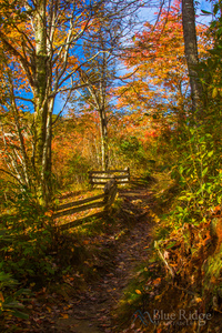Fall Graveyard Fields Blue Ridge Parkway