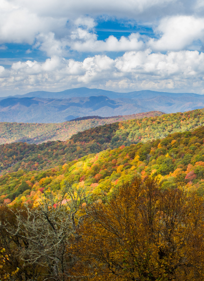 Fall Bunches Bald Overlook Blue Ridge Parkway
