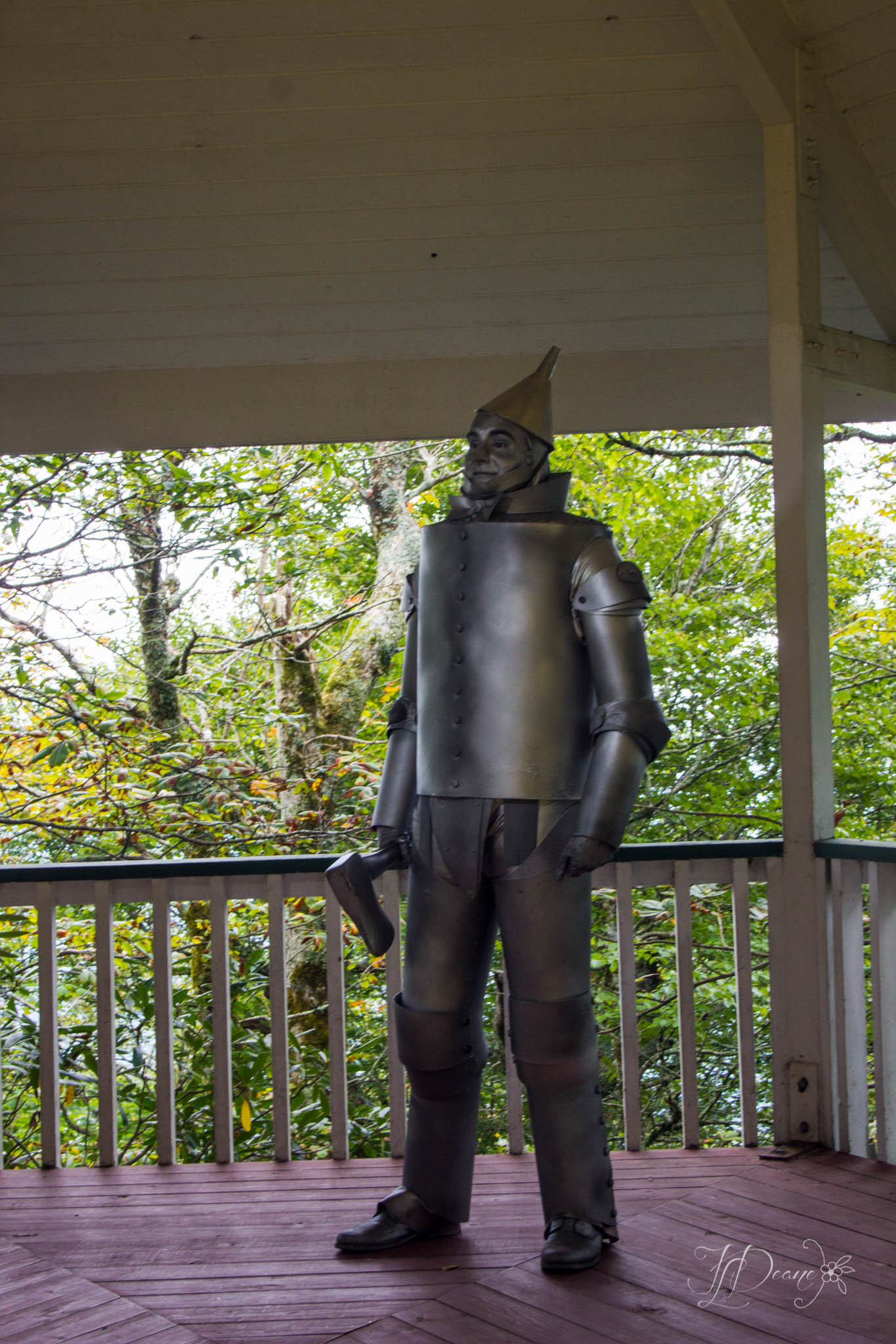 Land of Oz - Tinman