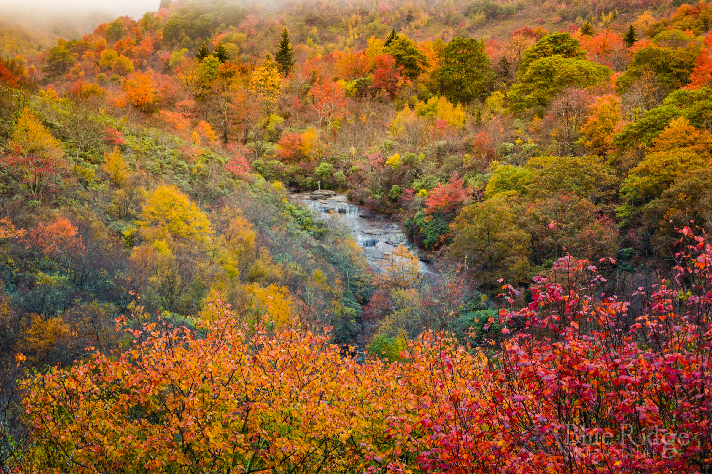 Fall at Lower Falls, Graveyard Fields