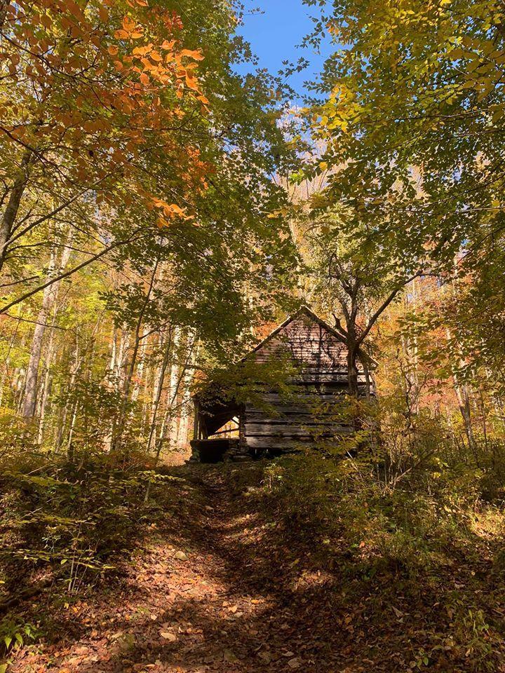Hannah Cabin in Little Cataloochee Valley