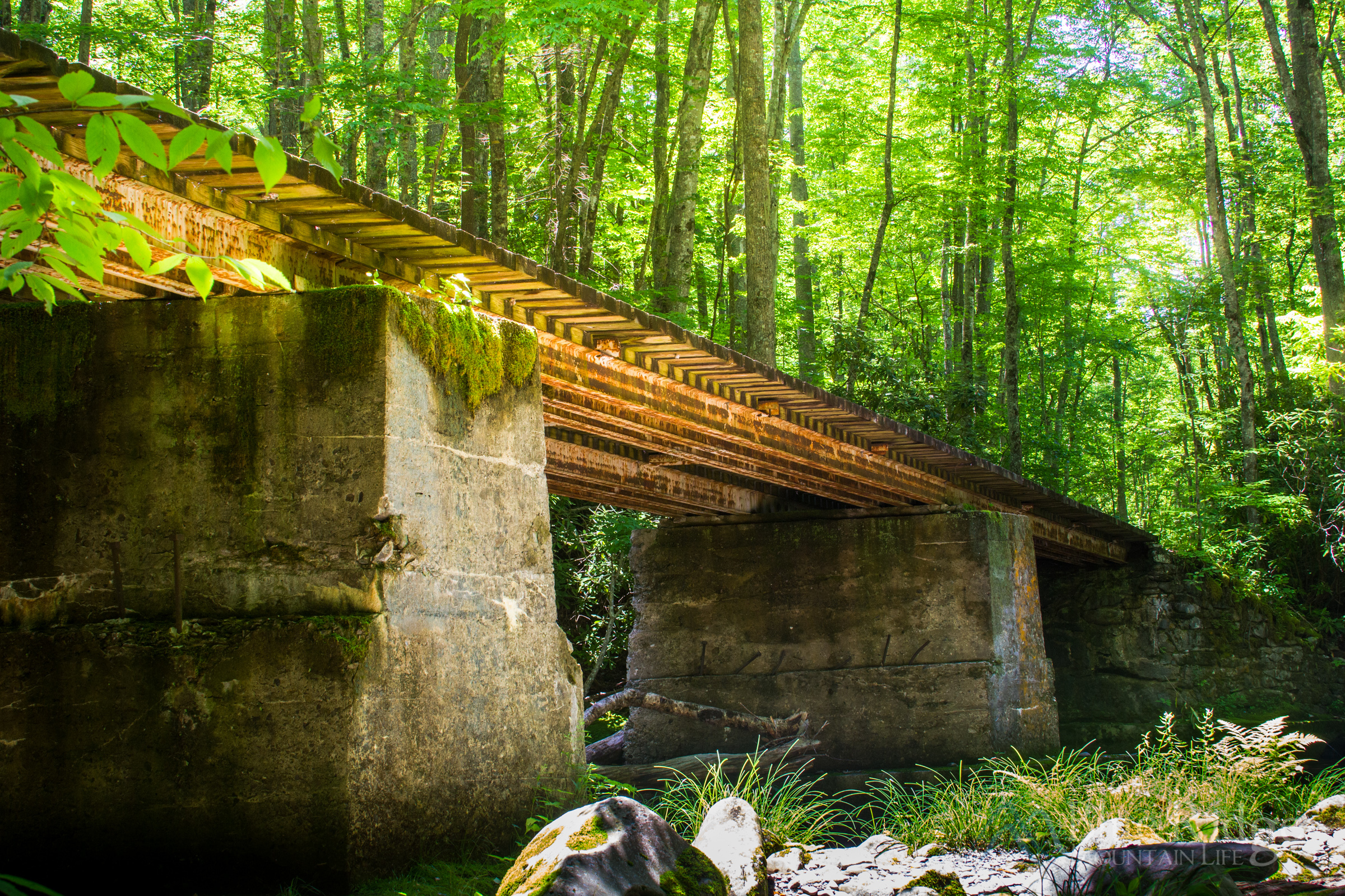 Little River Trail Elkmont