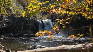Fall at Abrams Falls