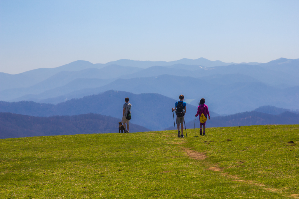 Max Patch North Carolina