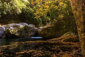 Fall at Midnight Hole in Big Creek
