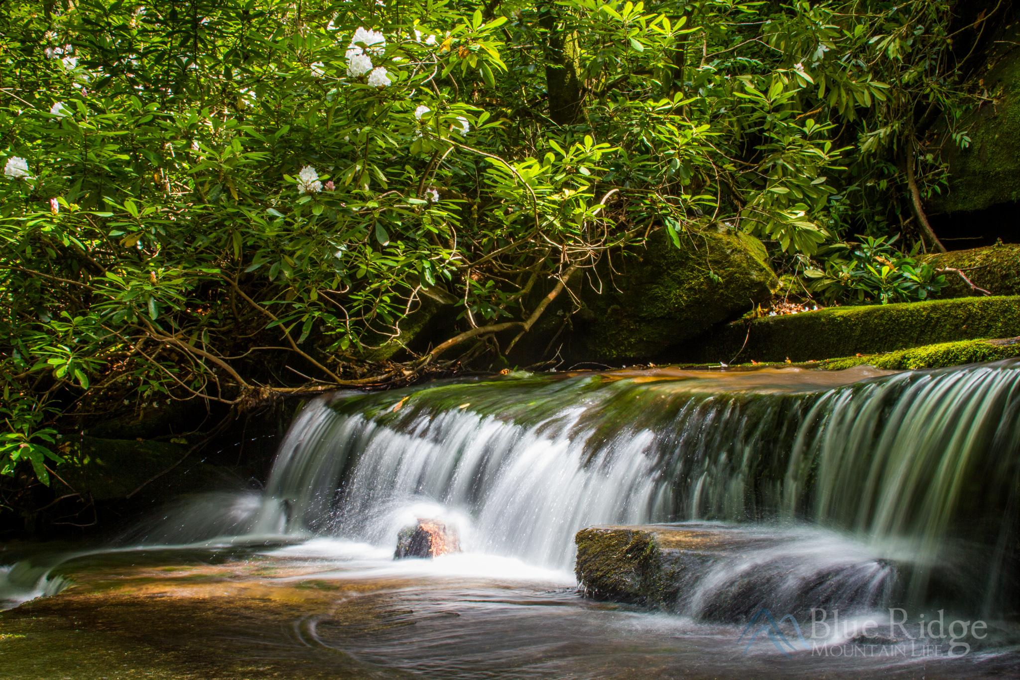 Spring at Grogan Creek Falls NC