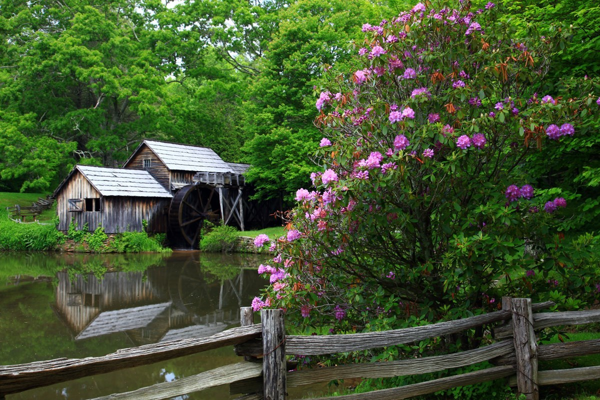 Spring at Mabry Mill
