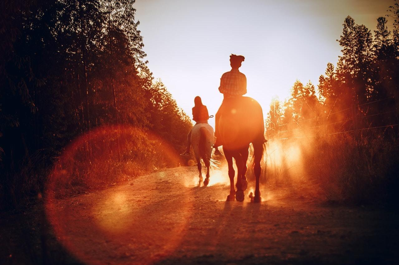 Cataloochee Valley Horse Camp