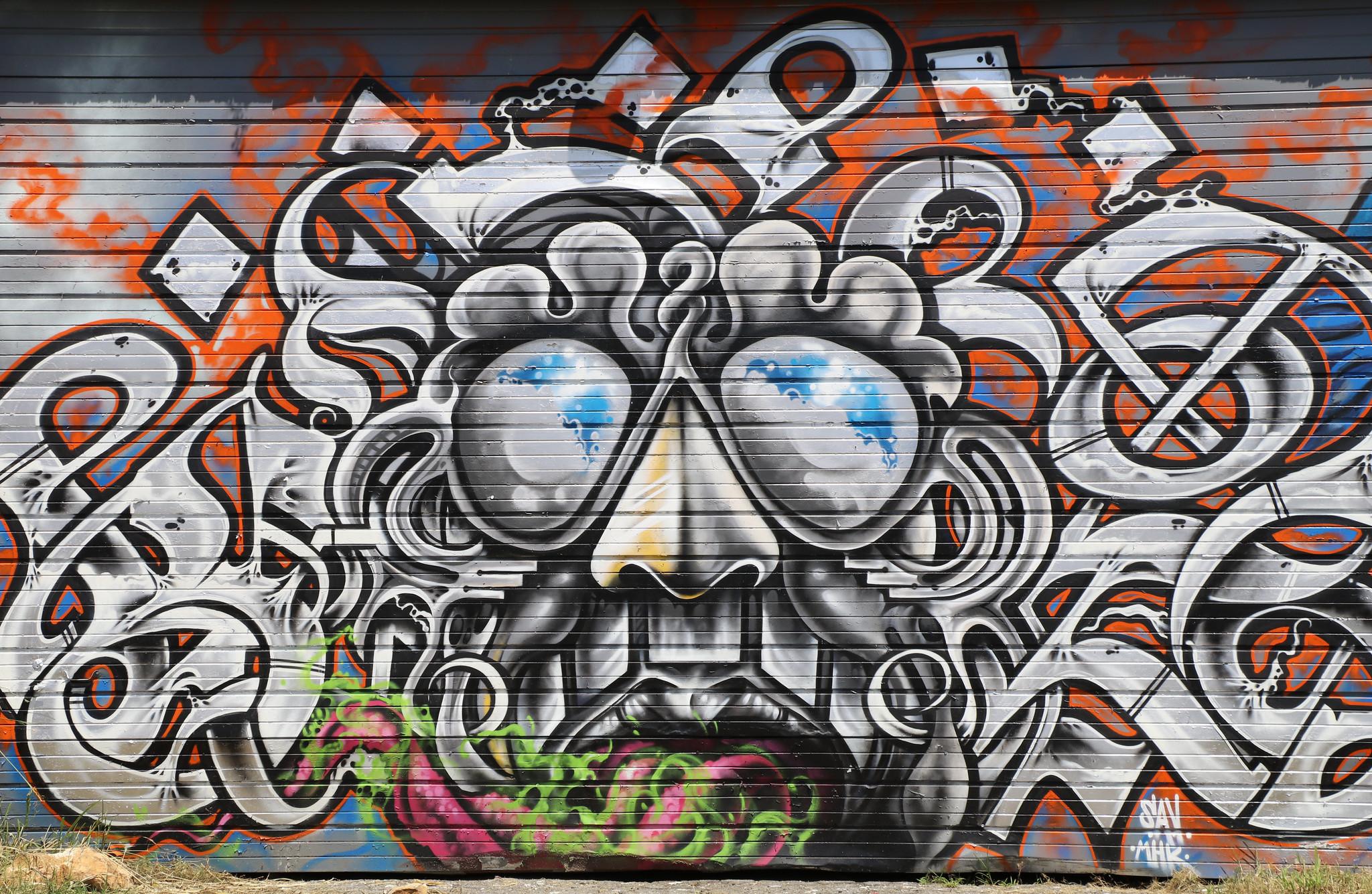 Asheville NC Street Art