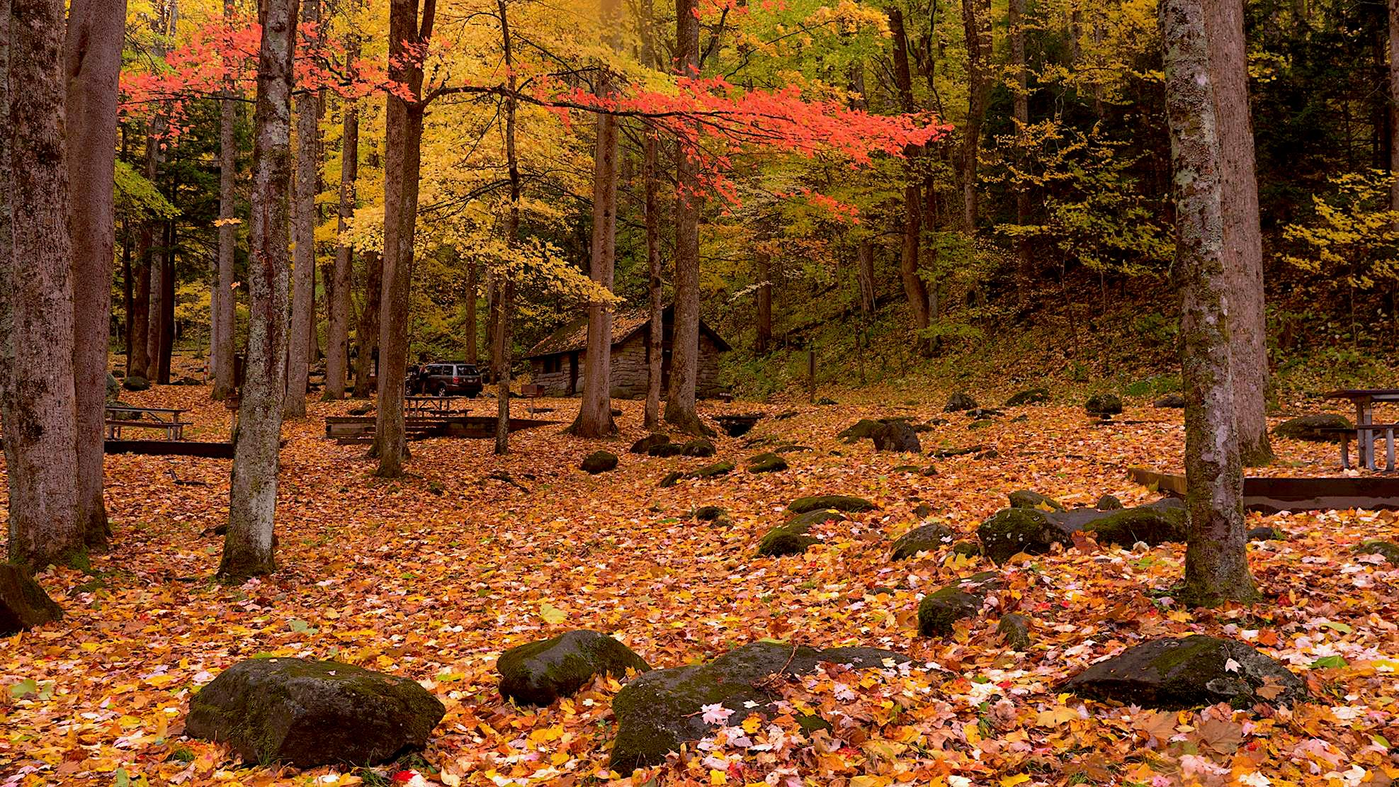 Fall Colors at Chimneys Picnic Area