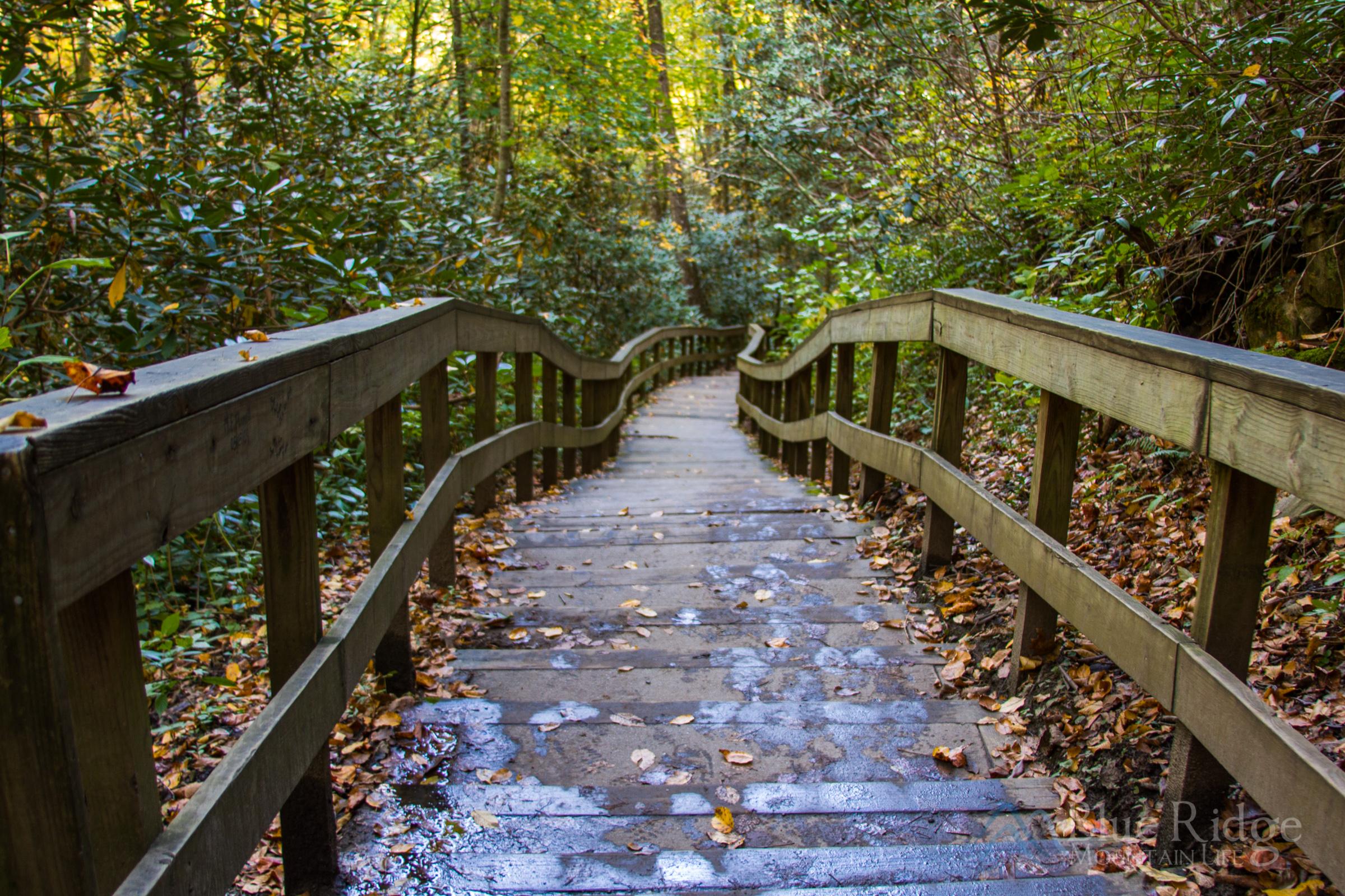 Mingo Falls Stairs